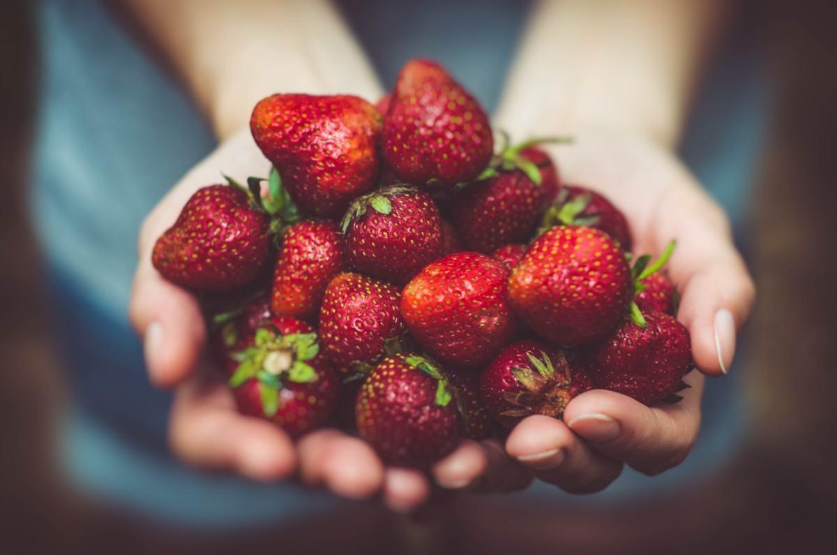 jordbær - ta ett strå og trå dom på!