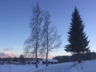 vinterbilde- jul, blått, gård